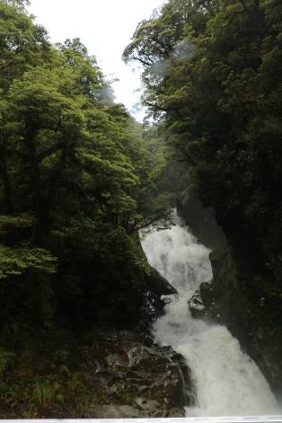 Auf dem Weg zum Doubtful Sound